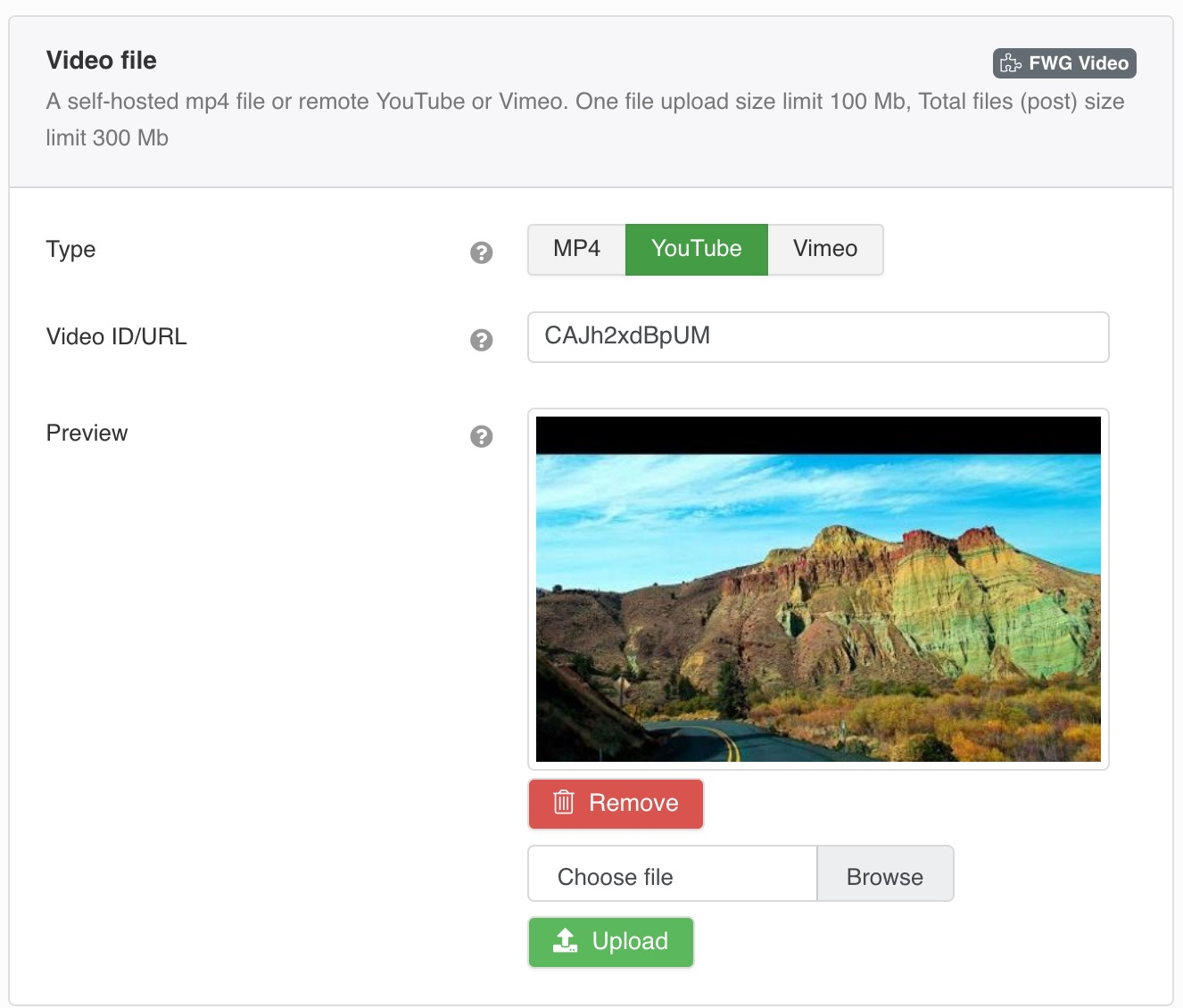 A self-hosted mp4 file or remote YouTube or Vimeo.