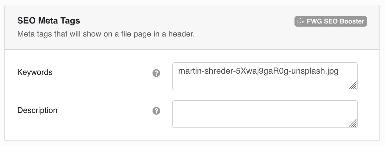 Meta tags that will show on a file page in a header.